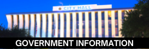 Government Information: Local, County, State, and National